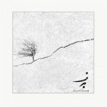 متن آهنگ برف از چارتار